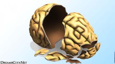 الدماغ العلوي الدماغ الواعي والدماغ السفلي الدماغ اللاواعي
