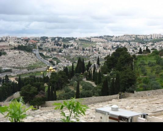 فلسطين للاقصى والمدينة المقدسة