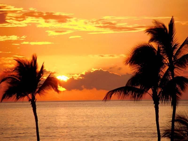 الشمس البحر