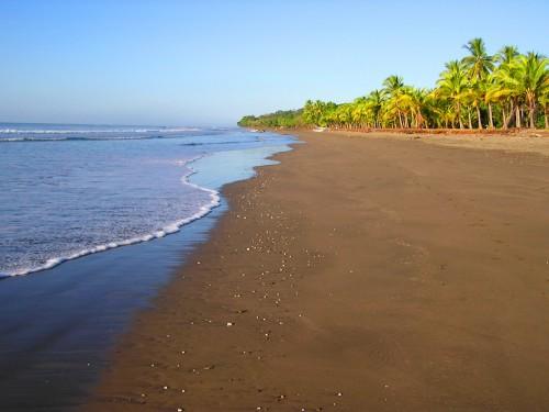 الشاطئ the beach
