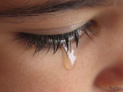 الدمع شااني يالحبّ بكيّته