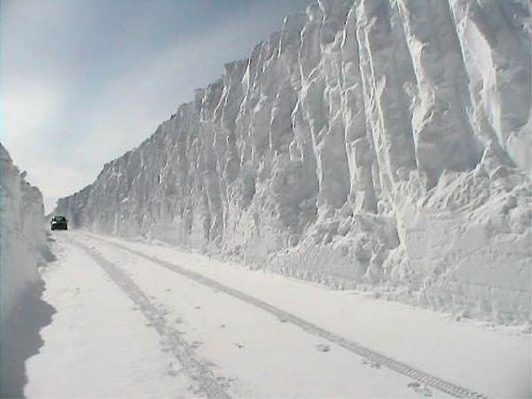 ثلوج الشتاء روسيا البيضاء