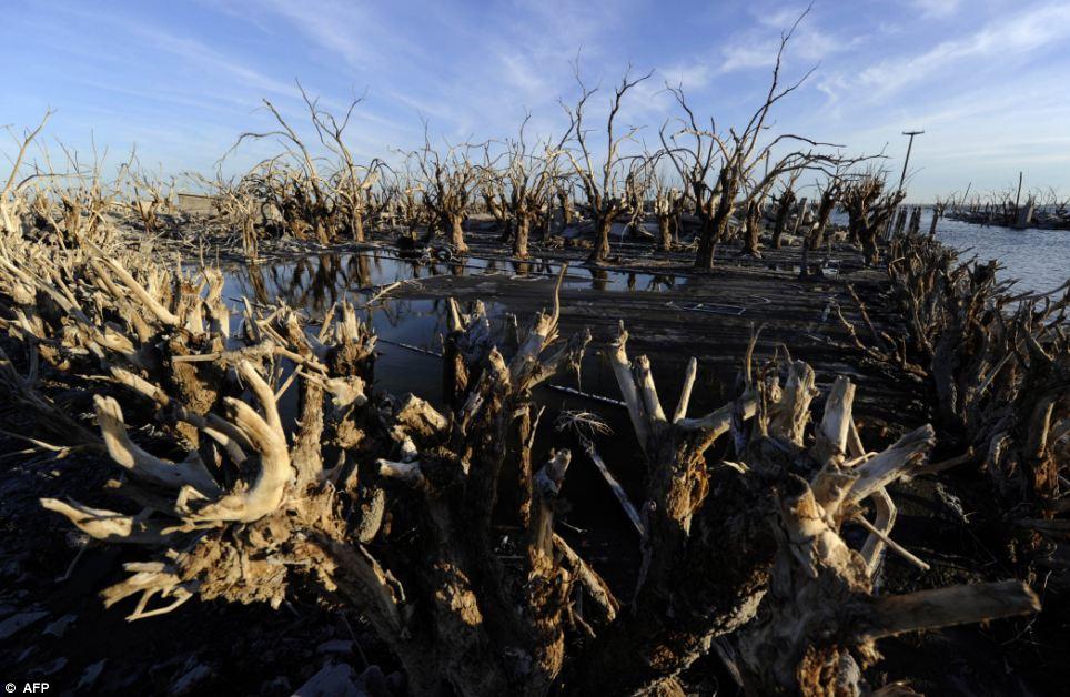 مدينة الأرجنتين تخرج الماء عاماً