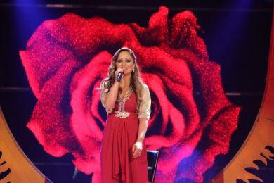 اخبار ايدول 31/5/2013 وكواليس برنامج arab-idol