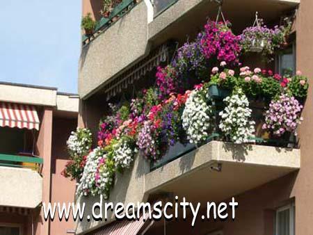 المنزل بالزهور والورود