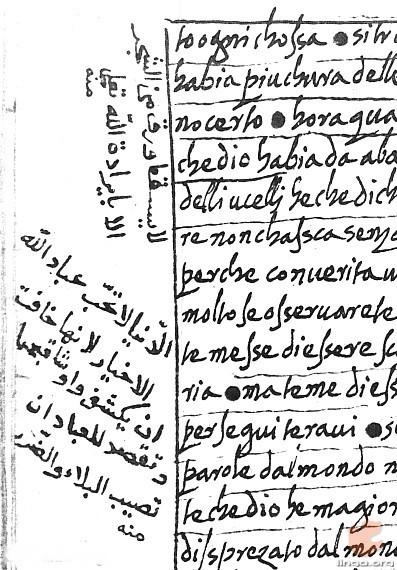 الانجيل المكتشف تركيا